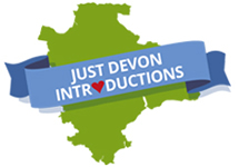 Devon area map